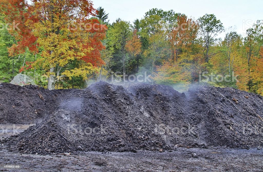 Steaming compost stock photo