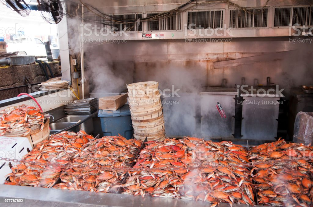 Steaming Hot Maryland Crabs royalty-free stock photo