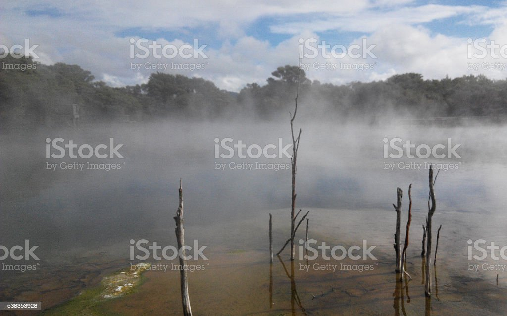 Steaming marshes stock photo
