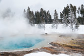 Thermal mineral pool with steam in winter at West Thumb Basin Fountain Paint Pot, Yellowstone National Park, Wyoming, USA