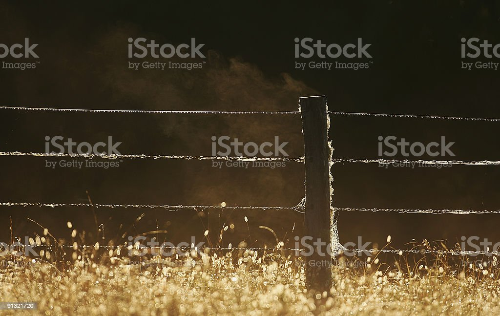 Steamy Fence Post at Dawn royalty-free stock photo