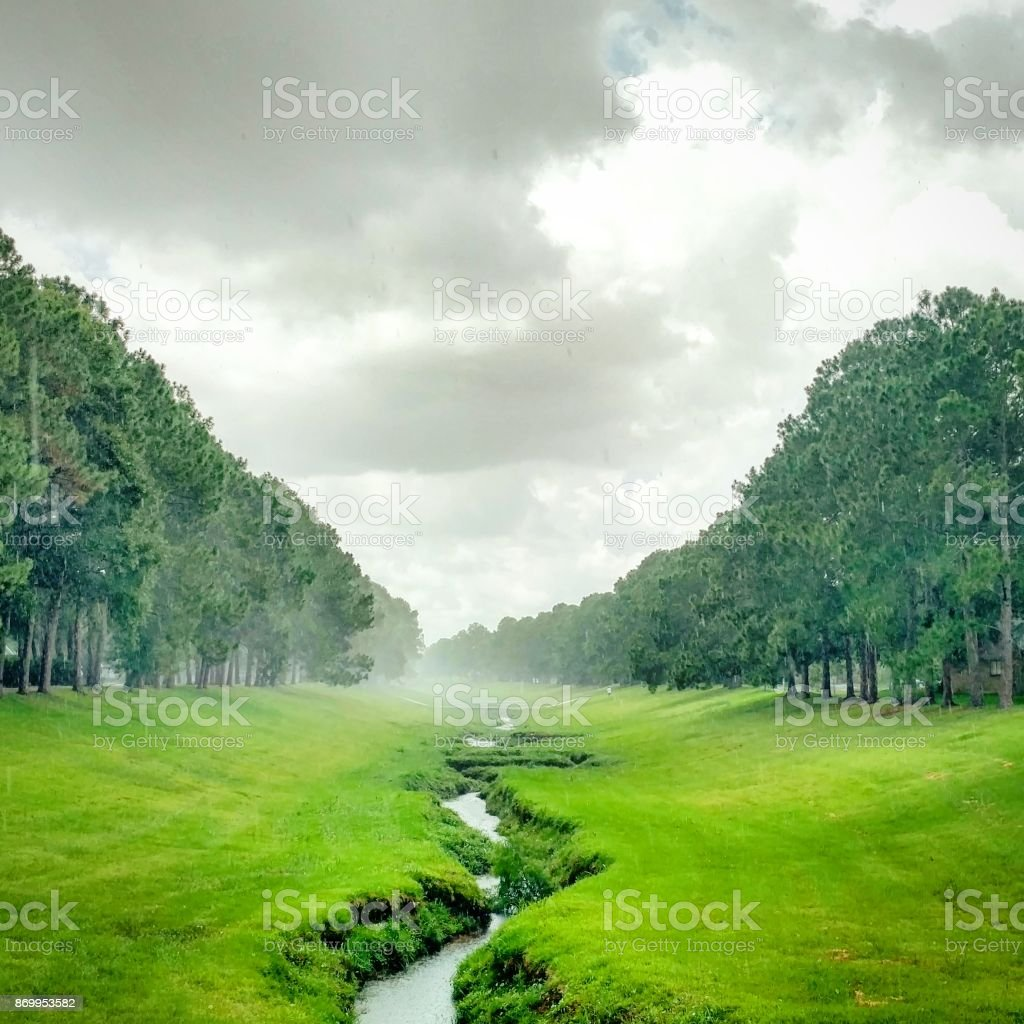 Steamy Greenway in the Rain stock photo