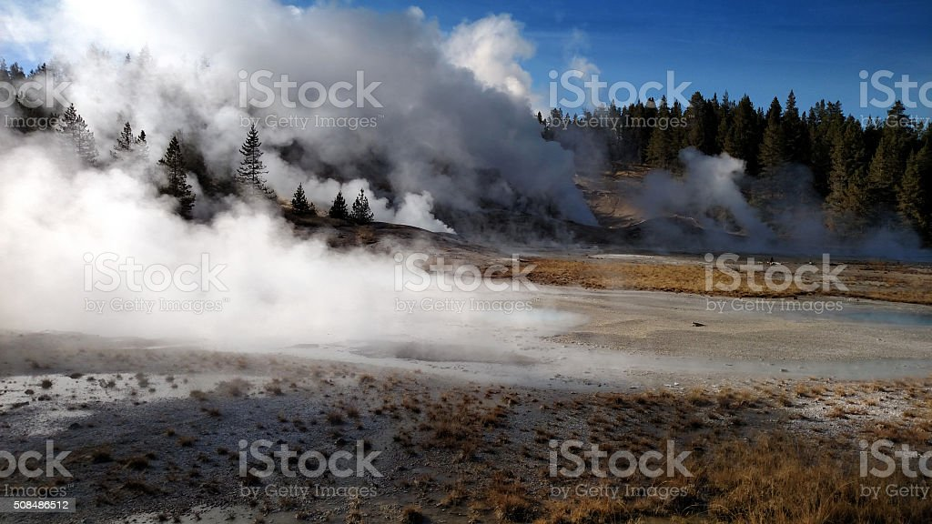 Steamy Scene at Norris Geyser Basin stock photo