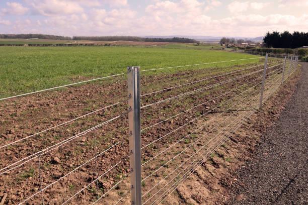 Steel fence bordering John Muir footpath stock photo