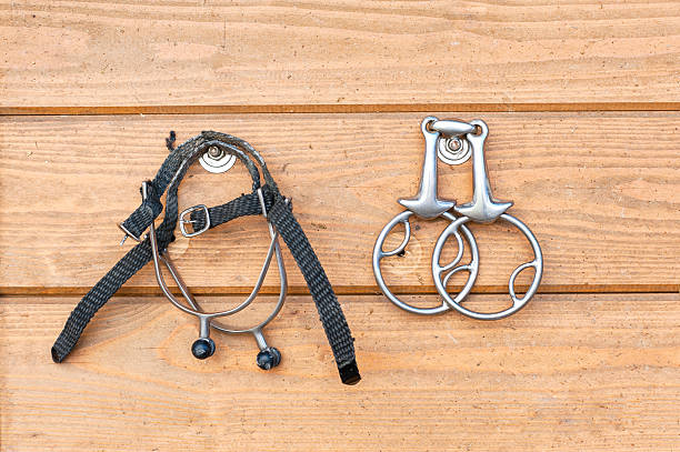 steel horse snaffle-bit and spurs hanging on wooden background - horse bit stock photos and pictures