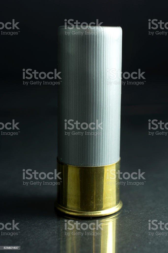 Steel Shot Shotgun Shell stock photo