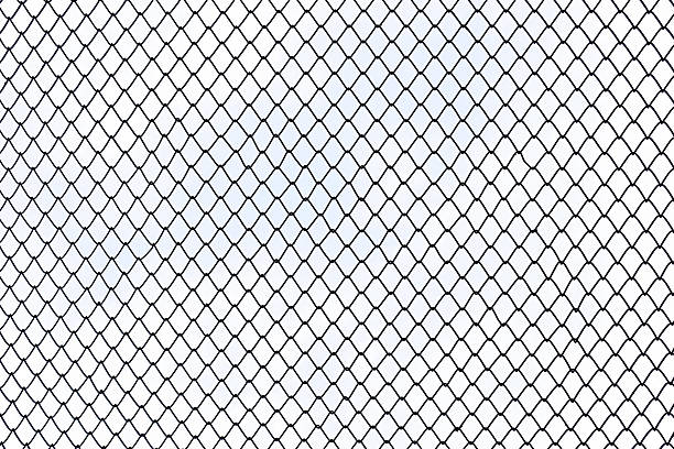 Steel wire mesh on white background isolated. stock photo