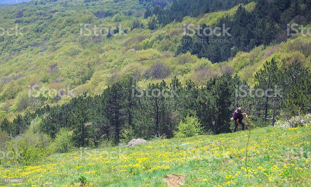 Steep climb royalty-free stock photo
