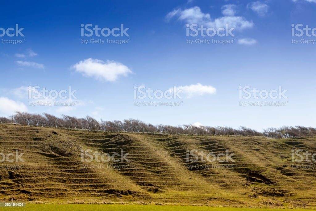 steep hill with sheep grassing and blue sky 免版稅 stock photo