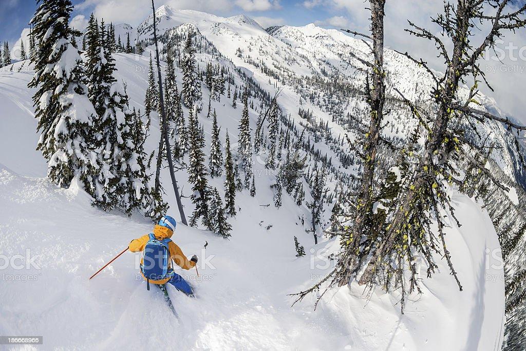 steep shoots powder skiing stock photo