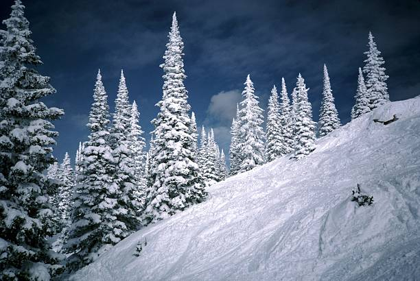 Steep Ski Slope at Steamboat Photo of steep ski slope at steamboat springs ski resort in colorado during winter. steamboat springs stock pictures, royalty-free photos & images