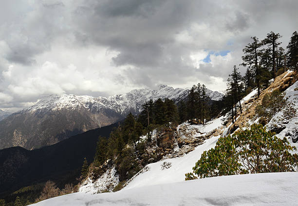 Steep slopes in the Himalayas slope in the background of snowy mountain range Badrinath and cloudy sky. Himalayas, Chopta. high seat stock pictures, royalty-free photos & images