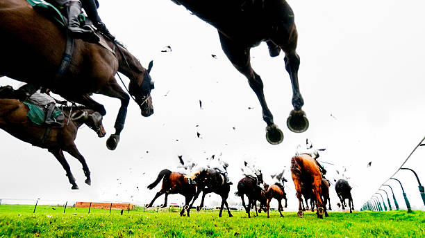 Steeplechase Jump and Horse Racing stock photo