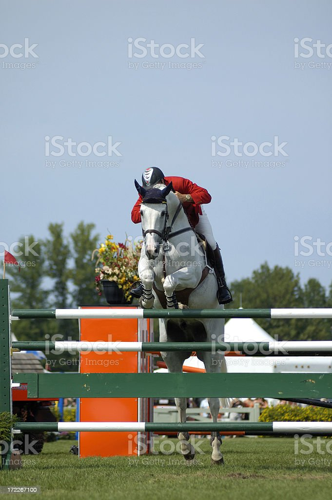 Steeplechase stock photo