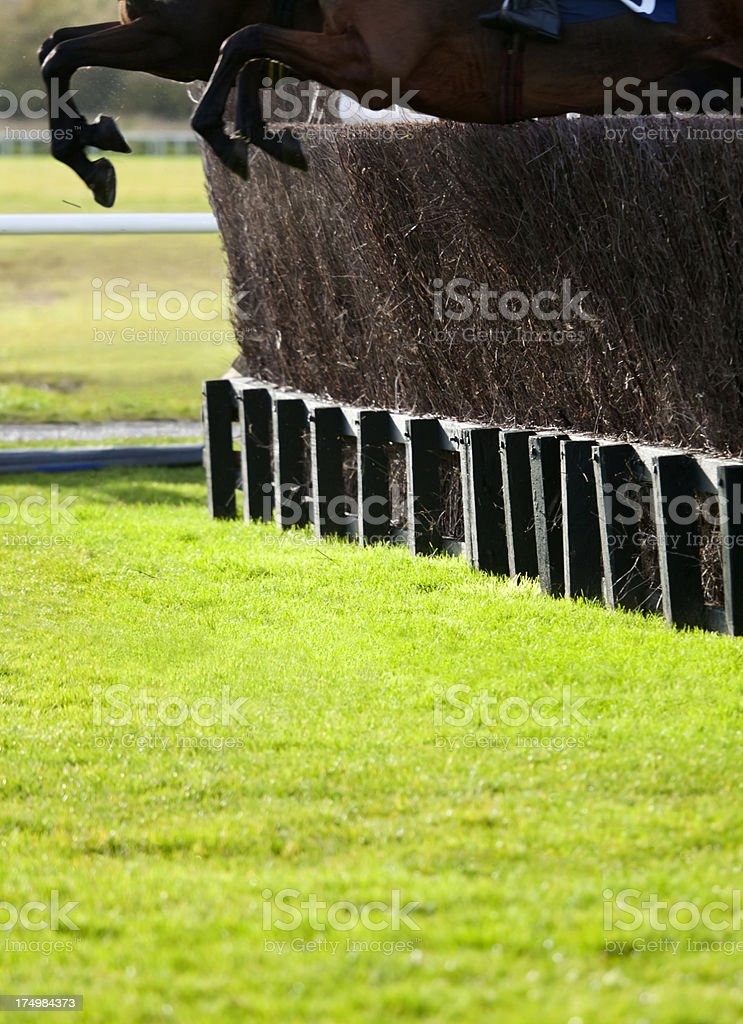 Steeplechasing stock photo