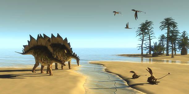 Stegosaurus Dinosaur Morning stock photo