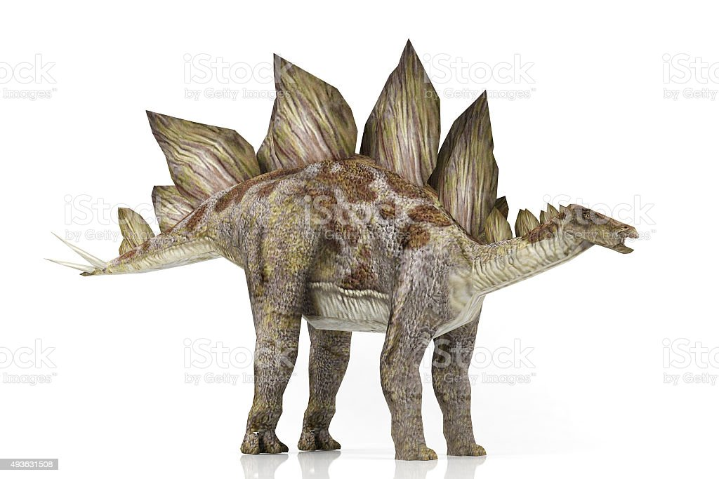 Stegosaurus – Foto