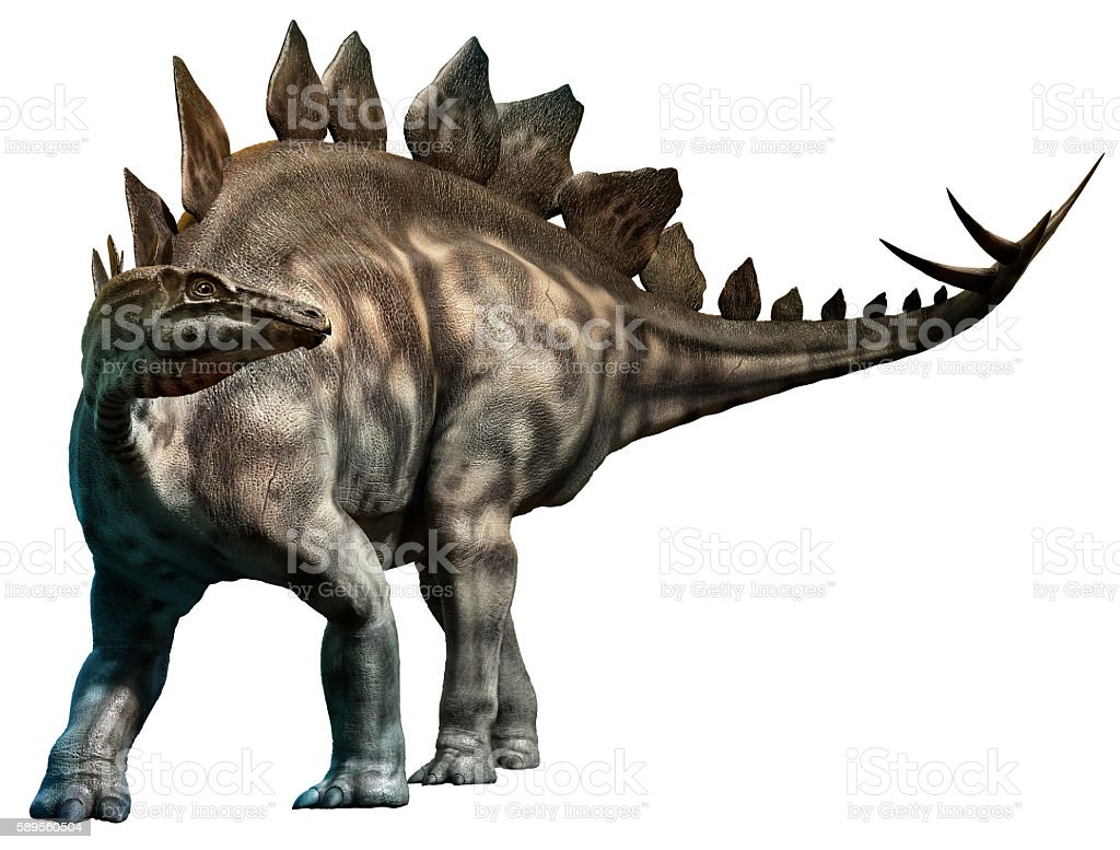 stegosaurus stock photo