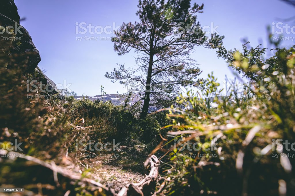 Steinslandsnuten Vindafjord stock photo