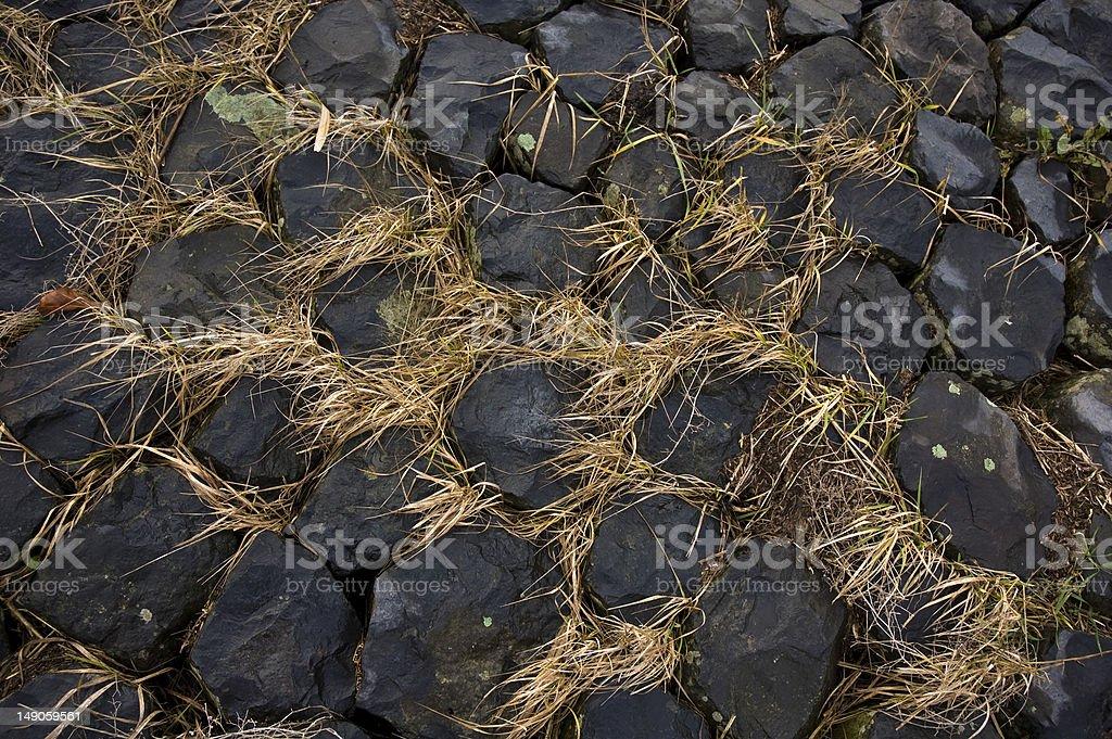 Steinweg mit Gras, Detailaufnahme stock photo