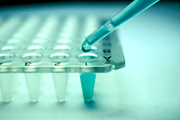 Stem Cell Research Pipette Stem Cell Research Pipette stem cell stock pictures, royalty-free photos & images