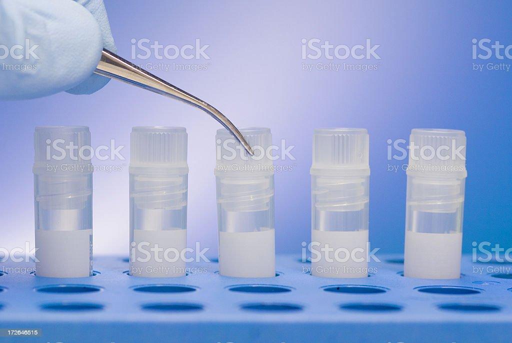 Stem cells royalty-free stock photo