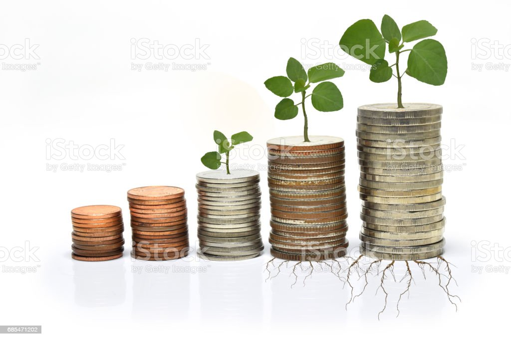 Step of coins grow up foto de stock royalty-free