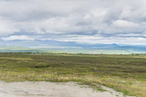 stäppen, kullar och moln i mjuka nyanser, sverige - ferry lake sweden bildbanksfoton och bilder