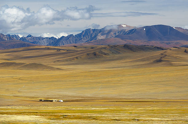 Steppe landscape with a nomad's camp Steppe landscape with a nomad's camp mongolian culture stock pictures, royalty-free photos & images