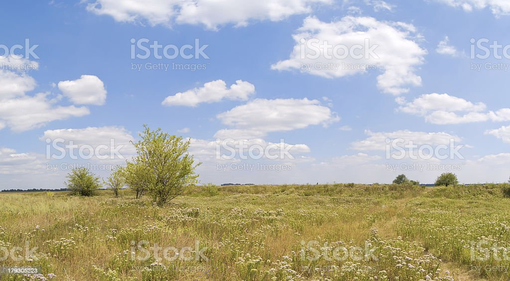 Steppe lanscape royalty-free stock photo