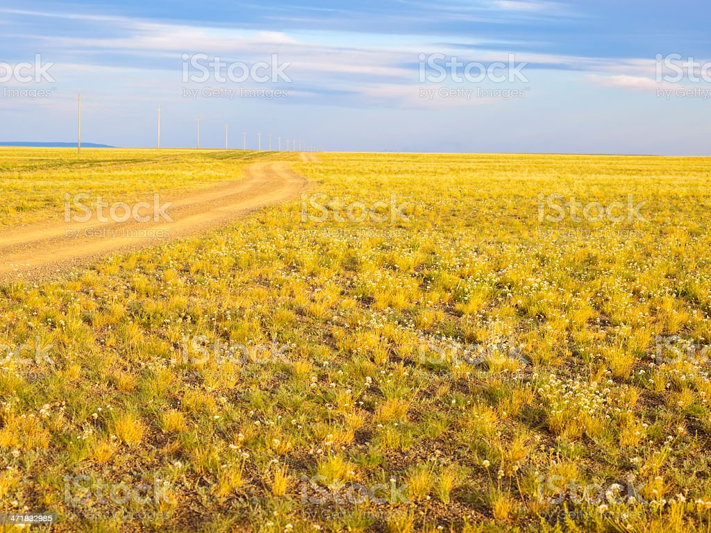 Steppe royalty-free stock photo