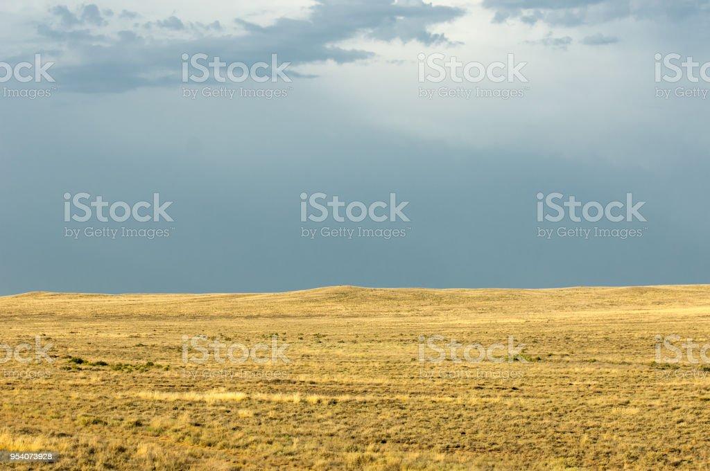 草原樹木のない貧しい水分乾燥地草原植生と地域を一般的にフラット ...