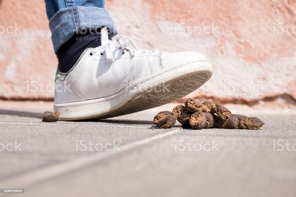 I stepped in dog shit stock photo