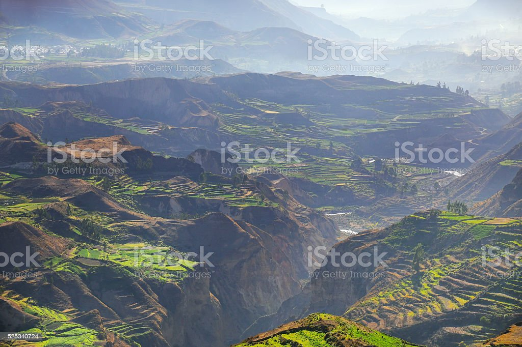 Stepped terraces with morning fog in Colca Canyon, Peru stock photo