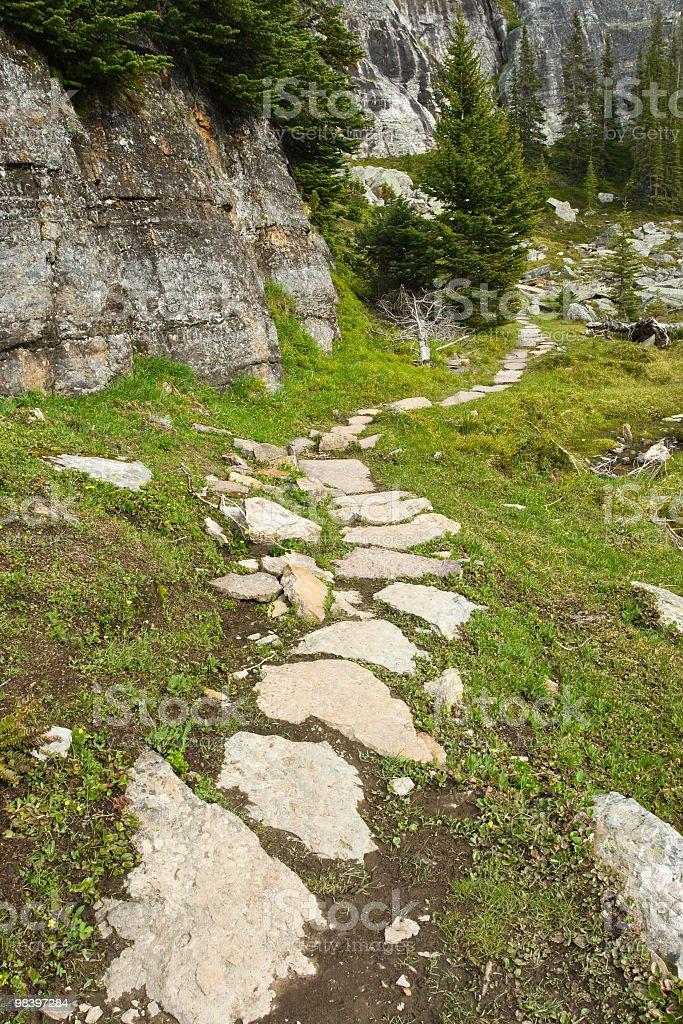 경로를 스텝핑 Stone Forest royalty-free 스톡 사진
