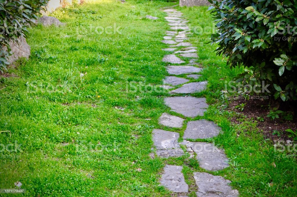 Stepping Stone Path In Old Garden Stock Photo Download Image Now Istock