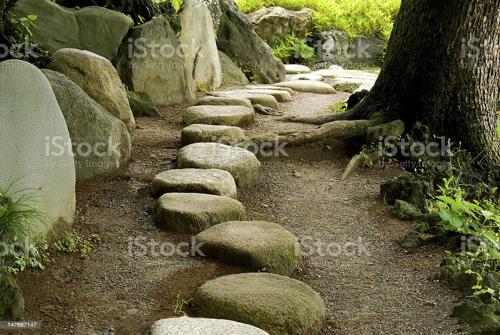 Stepping Stone royalty-free stock photo