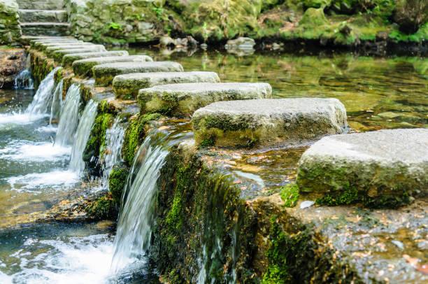 Trittsteine auf dem Shimna River, Tollymore Forest Park, Newcastle, Nordirland – Foto