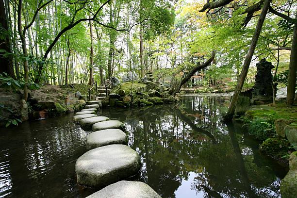 stepping stones - japanischer garten stock-fotos und bilder