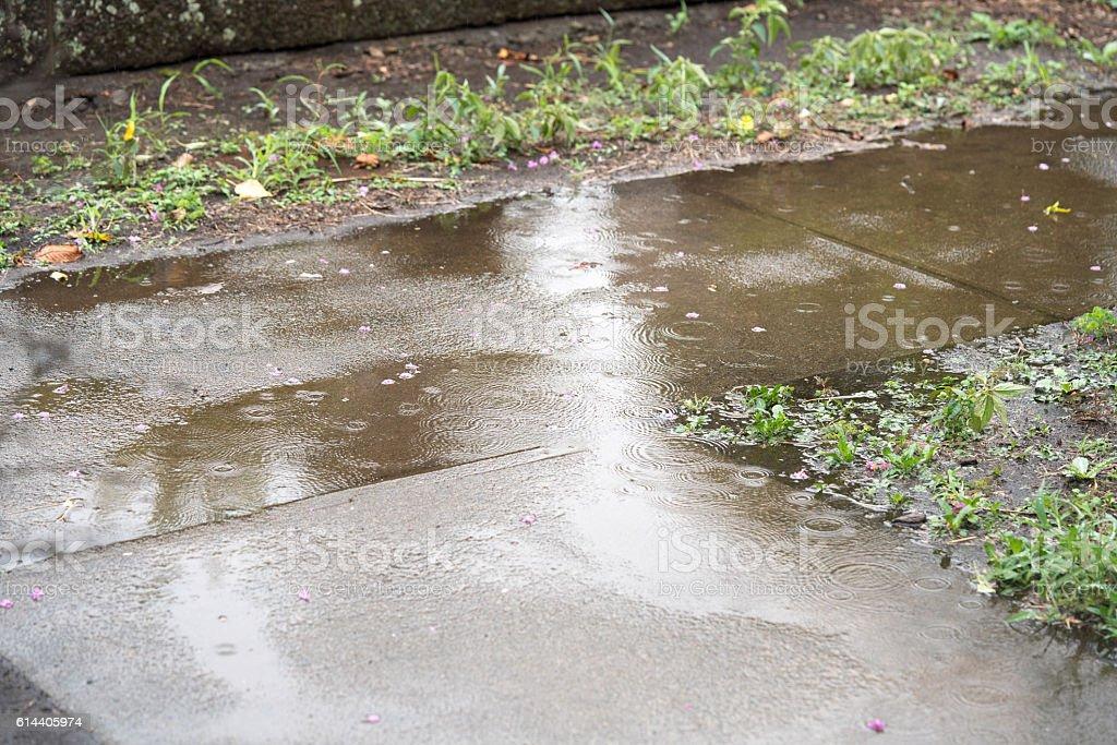 O Step stones - foto de acervo