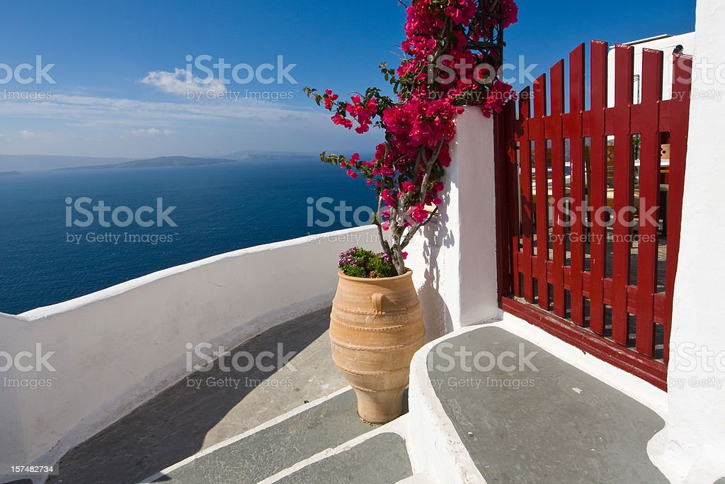 steps and Bougainvillea royalty-free stock photo