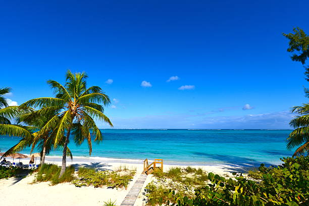 steps at grace bay beach in turks and caicos - bahama's stockfoto's en -beelden