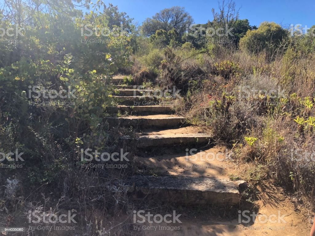 Steps At Paarl Nature Reserve Hiking Trail Stock Photo Download Image Now Istock