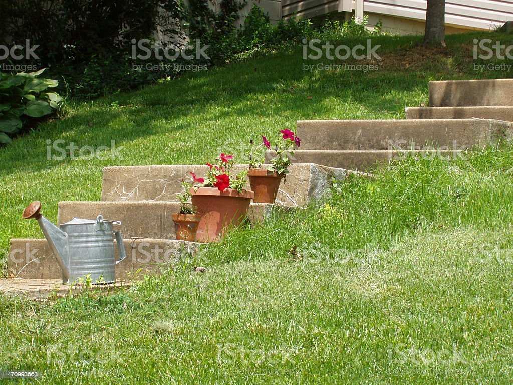 Steps, flowers & waterpale stock photo