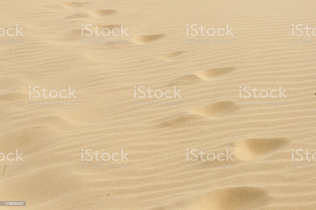 Steps in the dry hot sand. royalty-free stock photo