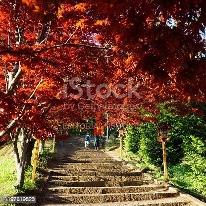 istock Steps leading to Arakura Fuji Sengen Jinja shinto shrine 1197619823