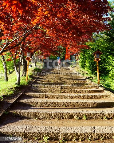 istock Steps leading to Arakura Fuji Sengen Jinja shinto shrine 1197620496