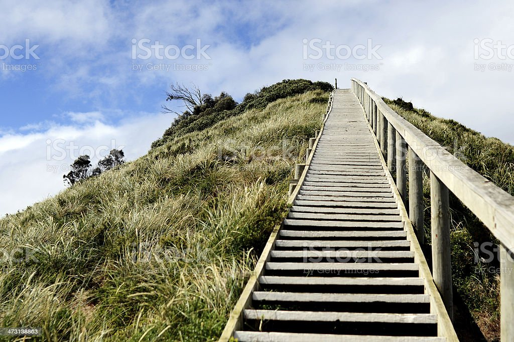 Steps to Bruny Island Neck Lookout 2 stock photo