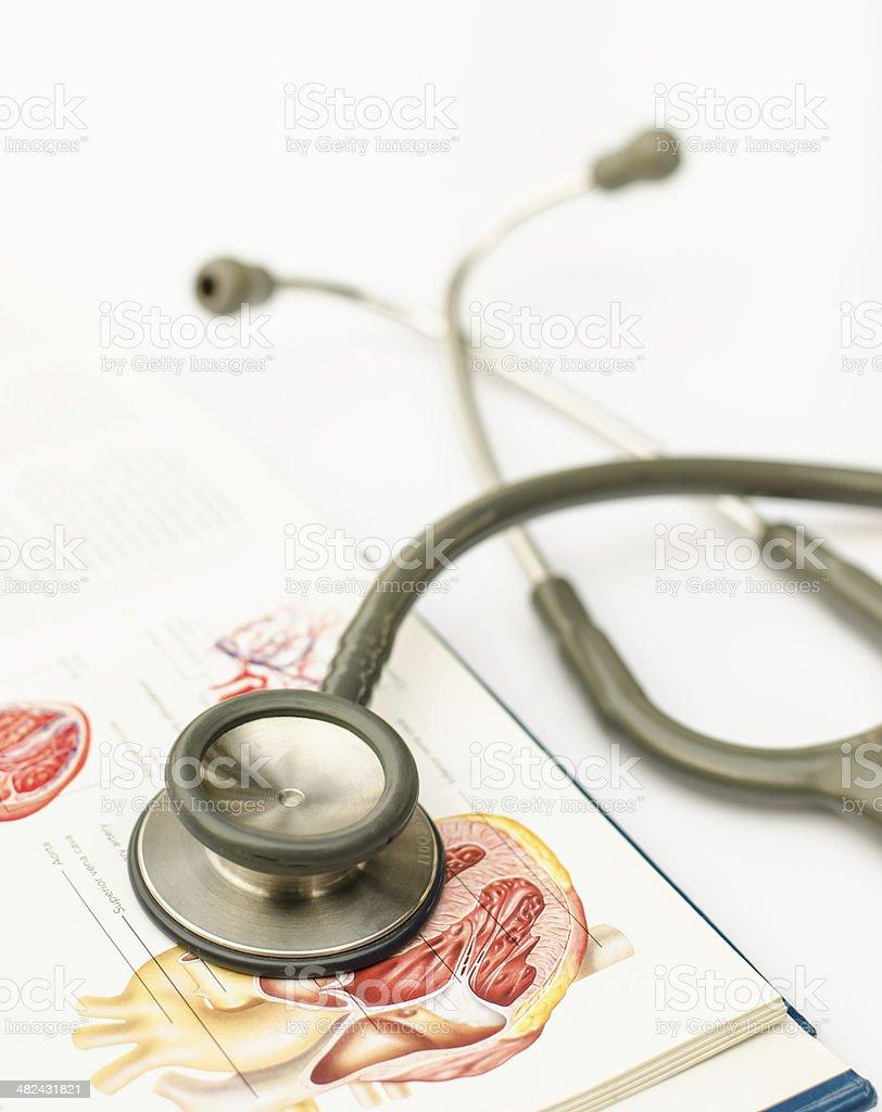 Estetoscopio y anatomía manual sobre fondo blanco - foto de stock