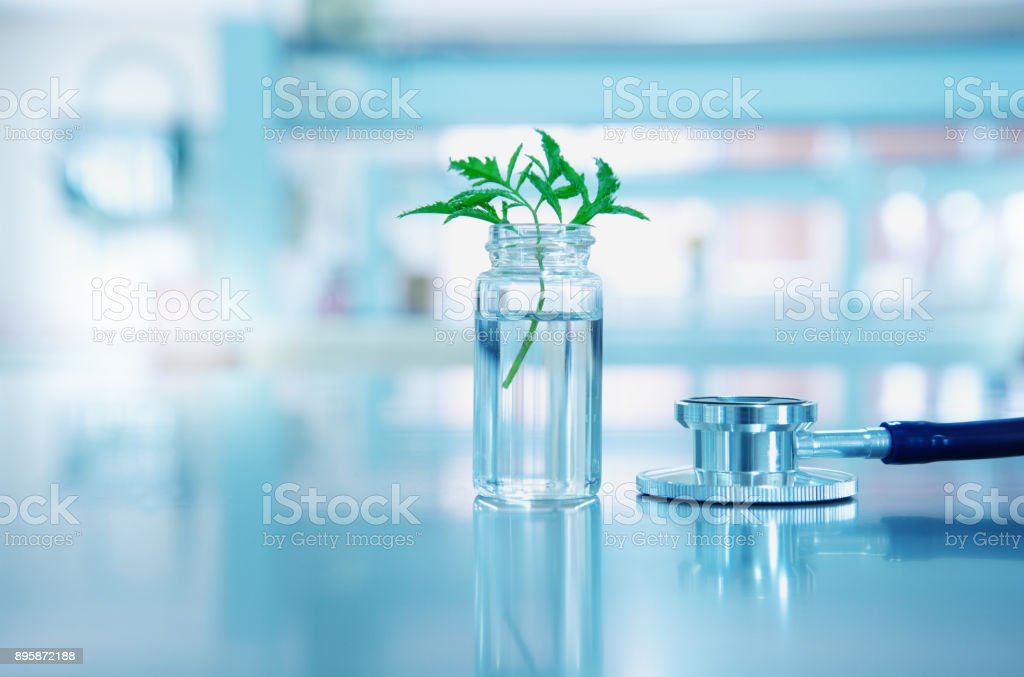 stethoscope for health medical doctor diagnosis with vial glass and green leave plant in blue light background stock photo